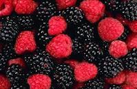 Berries for Longevity